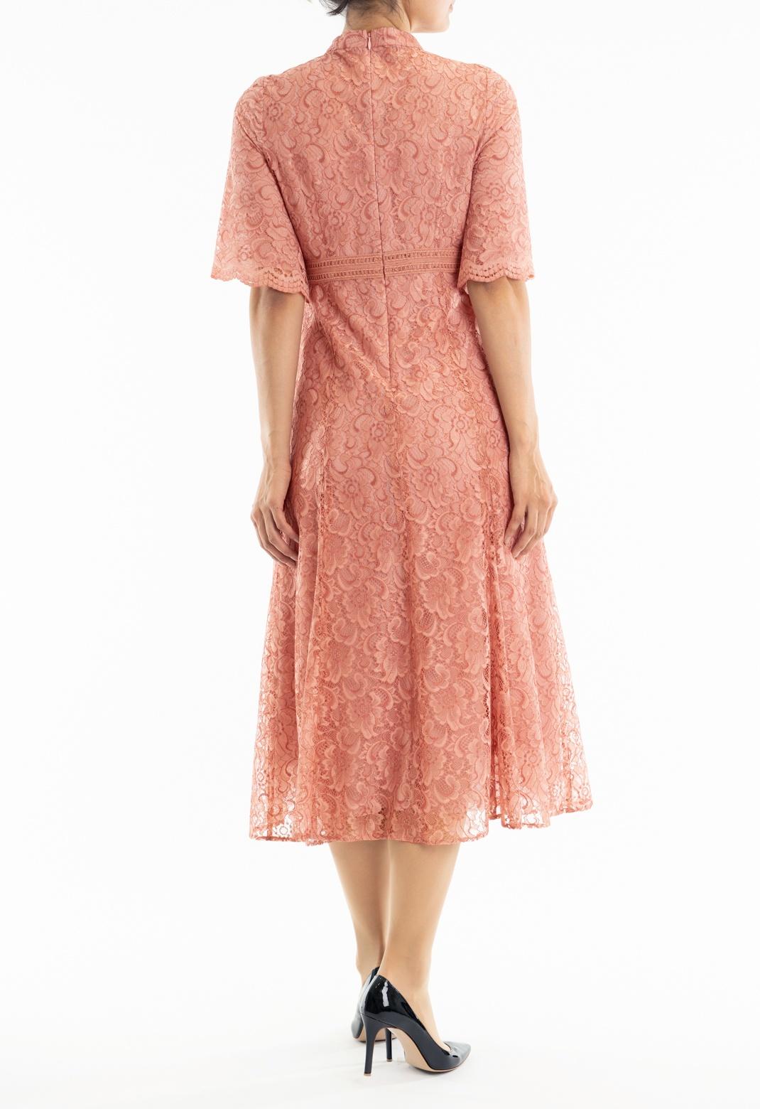 ハシゴレースハイネック 半袖 ドレス